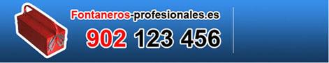 fontaneros_profesionales.jpg